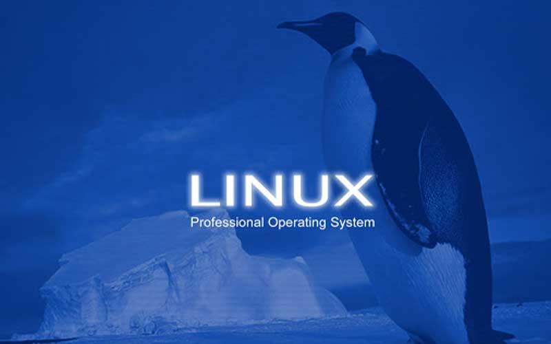 تصویر از لینوکس چیست [هرآنچه باید در مورد معایب و مزایای لینوکس بدانید]