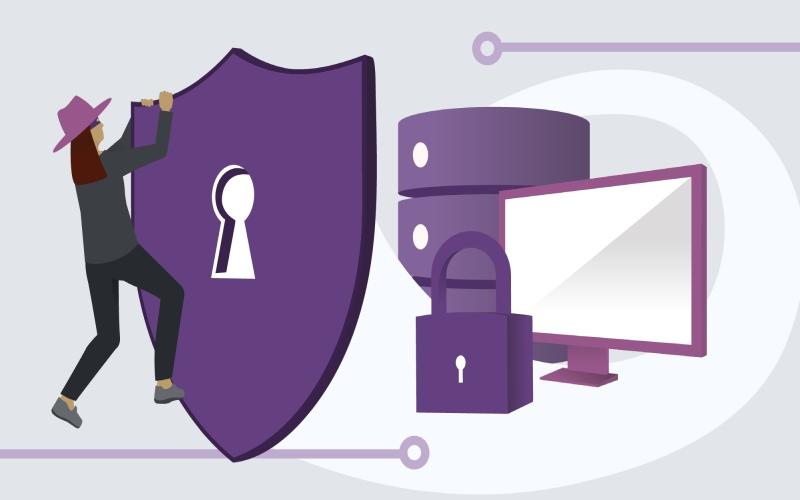 استاندارد امنیتی owasp