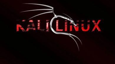 تصویر از سیستم عامل کالی لینوکس چیست ؟ آشنایی با کاربرد کالی لینوکس
